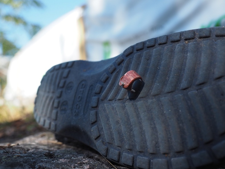Naula kengässä